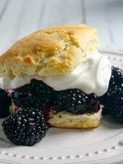 Blackberry-Blueberry Shortcake | Life, Love, and Good Food