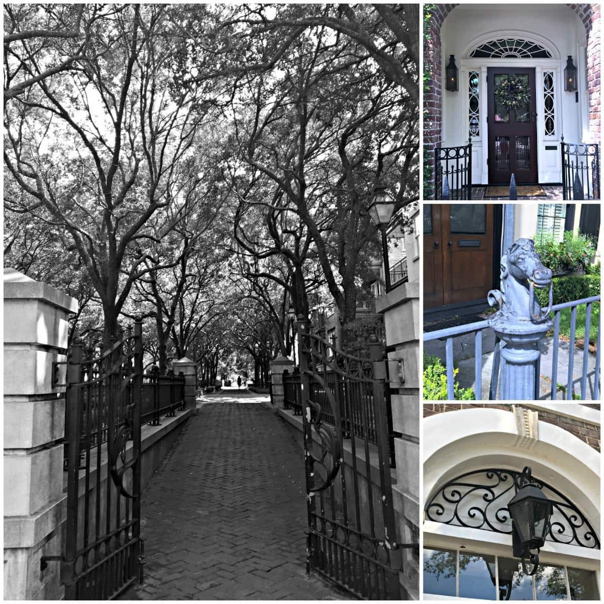 A series of doorways in Charleston, SC