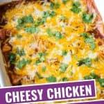 casserole dish of cheese and chicken enchiladas