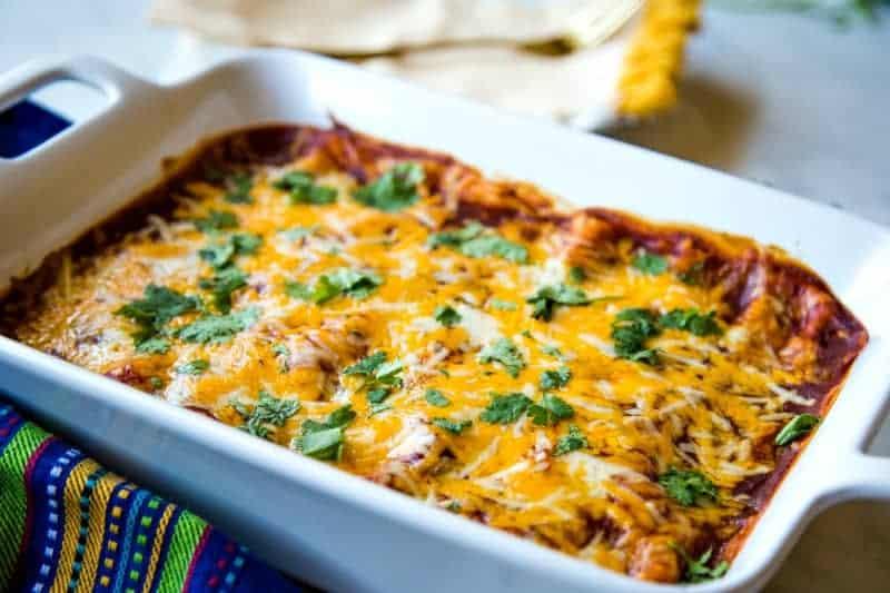 Cheesy Chicken Enchiladas garnished with cilantro