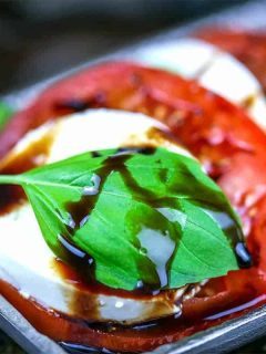 A plate of fCaprese salad