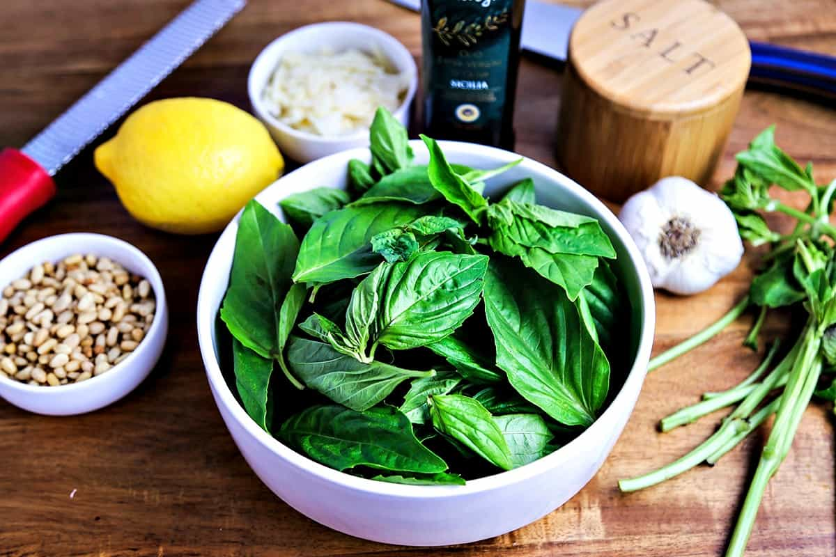 A bowl of basil leaves in a bowl