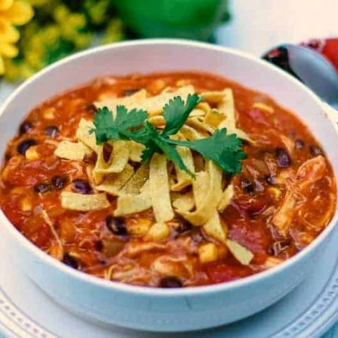 A bowl of soup, with Chicken Enchilada Soup