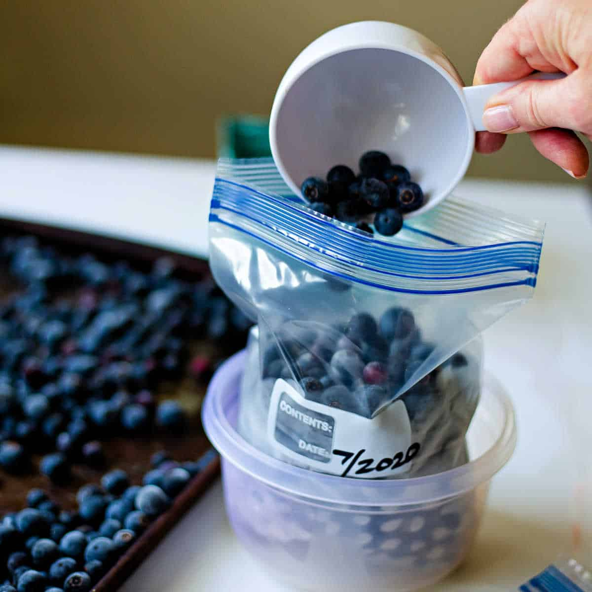 pouring blueberries into a freezer bag