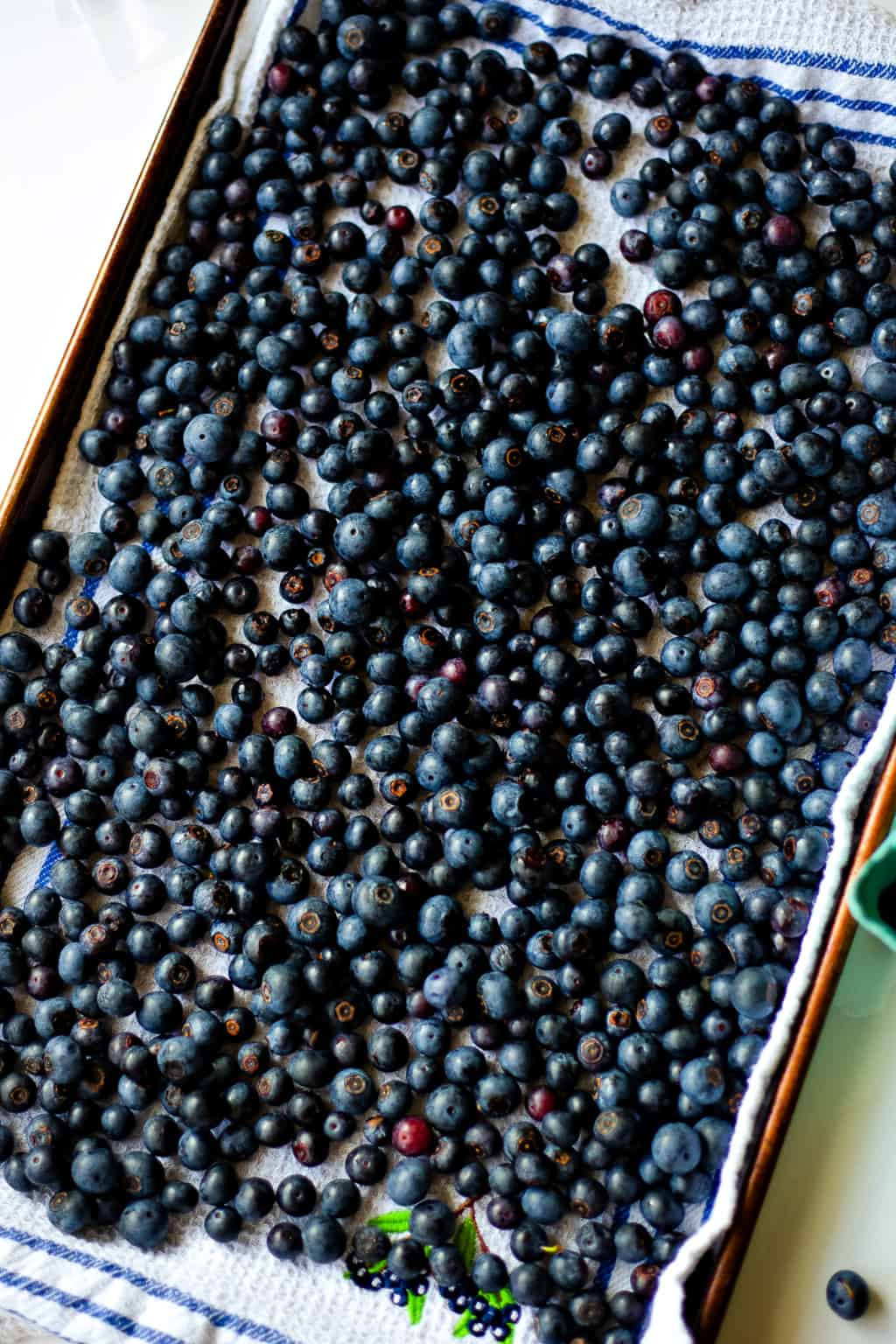 blueberries in a single layer on a kitchen towel
