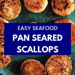 pan seared scallops on a blue plate